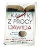 Kamyk z procy Dawida. Jak czytać Pismo Święte?