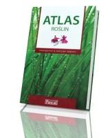 Atlas roślin. Przydatny z natury rzeczy
