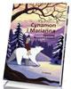 Cynamon i Marianna - okładka książki