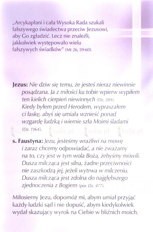 Droga Krzyżowa. Oparta na Piśmie Świętym i Dzienniczku św. Faustyny - Klub Książki Tolle.pl