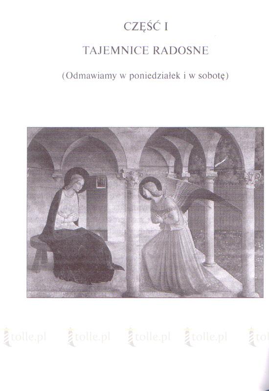 Różaniec za zmarłych cierpiących w czyśćcu - Klub Książki Tolle.pl