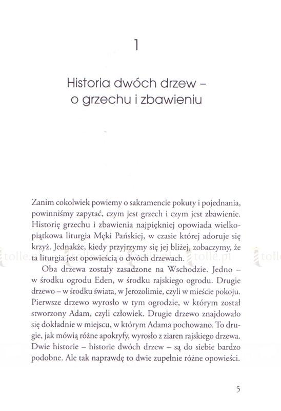 Zanurzyć się w sercu miłosierdzia. Pomoc w przygotowaniu się do sakramentu pojednania - Klub Książki Tolle.pl